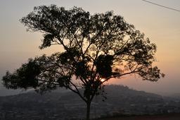 Coucher de soleil sur les collines de Yaoundé. Source : http://data.abuledu.org/URI/52daadd5-coucher-de-soleil-sur-les-collines-de-yaounde