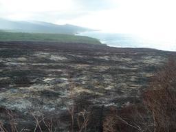 Coulée de lave du Piton de La Fournaise. Source : http://data.abuledu.org/URI/521a23b0-coulee-de-lave-du-piton-de-la-fournaise