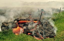 Coulée de lave du volcan Kilauea. Source : http://data.abuledu.org/URI/551c6b9a-coulee-de-lave-du-volcan-kilauea