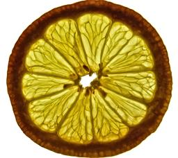 Coupe de citron. Source : http://data.abuledu.org/URI/532f1325-coupe-de-citron