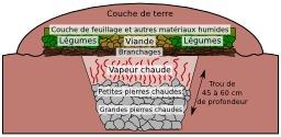Coupe schématique de four en terre Maori. Source : http://data.abuledu.org/URI/51024e81-coupe-schematique-de-four-en-terre-maori