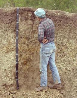 Coupe stratigraphique de sols. Source : http://data.abuledu.org/URI/509d9c61-coupe-stratigraphique-de-sols