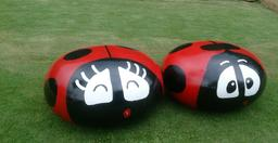 Couple de coccinelles. Source : http://data.abuledu.org/URI/5412a688-couple-de-coccinelles