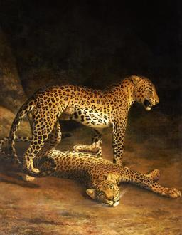 Couple de léopards. Source : http://data.abuledu.org/URI/520e3fc3-couple-de-leopards