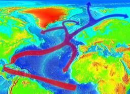 Courants du Gulf Stream. Source : http://data.abuledu.org/URI/518be695-courants-du-gulf-stream