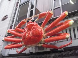 Crabe de la rue Dotonbori à Osaka. Source : http://data.abuledu.org/URI/517eaf9d-crabe-de-la-rue-dotonbori-a-osaka