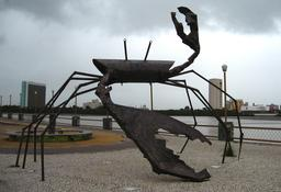 Crabe monumental. Source : http://data.abuledu.org/URI/517e9fd3-crabe-monumental