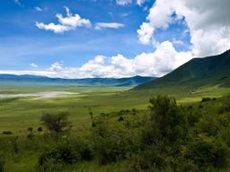 Cratère du Ngorongoro en Tanzanie. Source : http://data.abuledu.org/URI/527787e2-cratere-du-ngorongoro-en-tanzanie