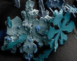 Cristaux de neige en fausses couleurs. Source : http://data.abuledu.org/URI/52bf29e2-cristaux-de-neige-en-fausses-couleurs