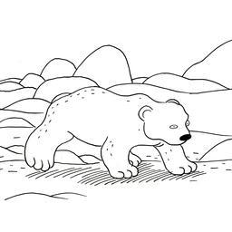 Croquis d'ours polaire sur la glace. Source : http://data.abuledu.org/URI/53fde6f3-croquis-d-ours-polaire-sur-la-glace