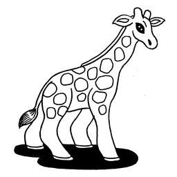 Croquis de girafe. Source : http://data.abuledu.org/URI/540079cc-croquis-de-girafe