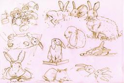 Croquis de lapins. Source : http://data.abuledu.org/URI/54ecf015-croquis-de-lapins