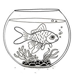 Croquis de poisson rouge dans son bocal. Source : http://data.abuledu.org/URI/53fe3170-croquis-de-poisson-rouge-dans-son-bocal