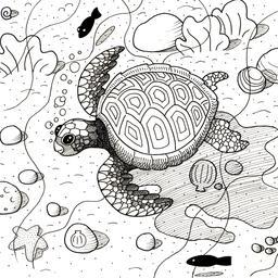 Croquis de tortue marine. Source : http://data.abuledu.org/URI/54006690-croquis-de-tortue-marine
