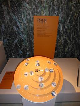 Culture du maïs. Source : http://data.abuledu.org/URI/582847eb-culture-du-mais