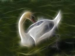 Cygne. Source : http://data.abuledu.org/URI/520c046a-cygne