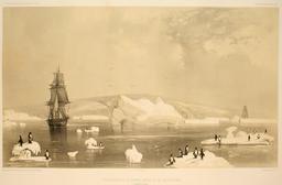 Découverte de la Terre Adélie le 19 janvier 1840. Source : http://data.abuledu.org/URI/598197b4-decouverte-de-la-terre-adelie-le-19-janvier-1840