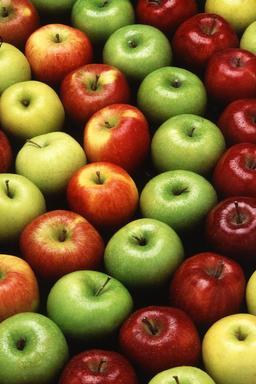 Des pommes. Source : http://data.abuledu.org/URI/47f4e72d-des-pommes