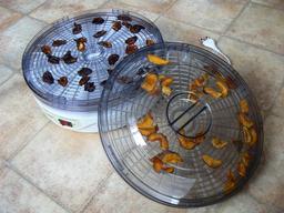 Déshydrateur de fruits électrique. Source : http://data.abuledu.org/URI/53ab0fa1-deshydrateur-de-fruits-electrique