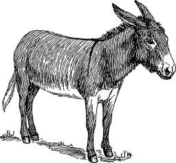 Dessin d'un âne. Source : http://data.abuledu.org/URI/47f57e15--ne