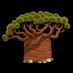 Dessin de baobab. Source : http://data.abuledu.org/URI/54f77683-dessin-de-baobab