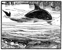 Dessin de dauphin. Source : http://data.abuledu.org/URI/583b4755-dessin-de-dauphin