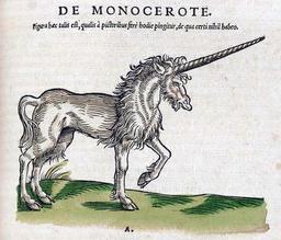 Dessin de licorne. Source : http://data.abuledu.org/URI/5072a7a9-dessin-de-licorne