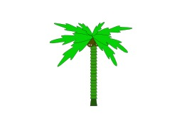 Dessin de palmier. Source : http://data.abuledu.org/URI/5049a322-dessin-de-palmier