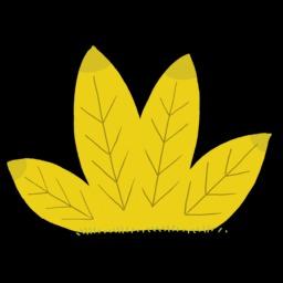 Dessin de plante. Source : http://data.abuledu.org/URI/54f789a4-dessin-de-plante-