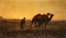 Deux dromadaires labourant. Source : http://data.abuledu.org/URI/54d3cd01-deux-dromadaires-labourant