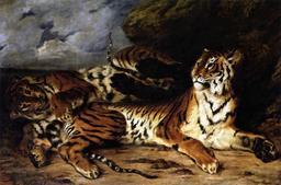Deux tigres. Source : http://data.abuledu.org/URI/51a50260-deux-tigres