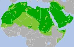 Diffusion de la langue arabe en Afrique et au Proche-Orient. Source : http://data.abuledu.org/URI/52b574a4-diffusion-de-la-langue-arabe-en-afrique-et-au-proche-orient