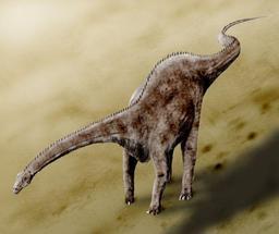 Diplodocus. Source : http://data.abuledu.org/URI/507fb62c-diplodocus-