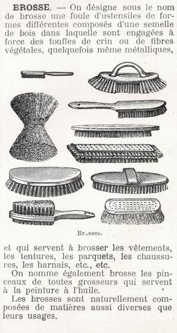 Dix types de brosses. Source : http://data.abuledu.org/URI/5663970a-dix-types-de-brosses