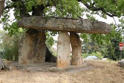 Dolmen de Draguignan en Provence, la Pierre de la fée. Source : http://data.abuledu.org/URI/47f4e764-dolmen-de-draguignan-en-provence-la-pierre-de-la-f-e