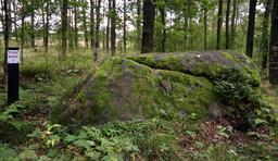 Dolmen de Pyssestenen. Source : http://data.abuledu.org/URI/52b960ad-dolmen-de-pyssestenen