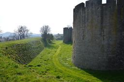 Douves et mur d'enceinte du Château comtal de Carcassonne. Source : http://data.abuledu.org/URI/54a8096c-douves-et-mur-d-enceinte-du-chateau-comtal-de-carcassonne