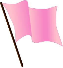 Drapeau rose. Source : http://data.abuledu.org/URI/50465bb2-drapeau-rose