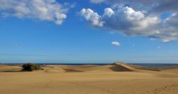 Dunes de Maspalomas. Source : http://data.abuledu.org/URI/52d165ca-dunes-de-maspalomas