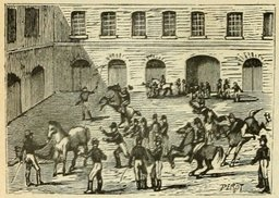 École de cavalerie de Saumur. Source : http://data.abuledu.org/URI/524ebfd5-ecole-de-cavalerie-de-saumur