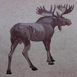 Élan en mosaïque. Source : http://data.abuledu.org/URI/516d7529-elan-en-mosaique