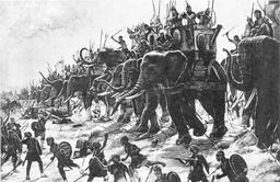 Éléphants de guerre carthaginois. Source : http://data.abuledu.org/URI/521076e4-elephants-de-guerre-carthaginois