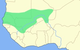 Empire du Mali. Source : http://data.abuledu.org/URI/52d044d1-empire-du-mali-