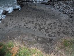 Empreintes de dinosaures en Espagne. Source : http://data.abuledu.org/URI/55de36b8-empreintes-de-dinosaures-en-espagne