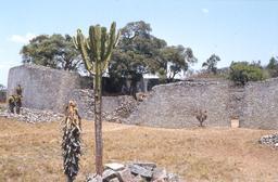Enceinte en pierre sèche du Grand Zimbabwe. Source : http://data.abuledu.org/URI/52d2d8b5-enceinte-en-pierre-seche-du-grand-zimbabwe