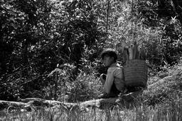 Enfant vietnamien transportant du bois. Source : http://data.abuledu.org/URI/58c8405a-enfant-vietnamien-transportant-du-bois