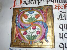 Enluminure de la lettre S du Psalterium nocturnus. Source : http://data.abuledu.org/URI/53d3f86d-enluminure-de-la-lettre-s-du-psalterium-nocturnus