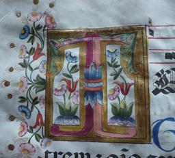Enluminure du Psalterium nocturnus. Source : http://data.abuledu.org/URI/53d3f938-enluminure-du-psalterium-nocturnus
