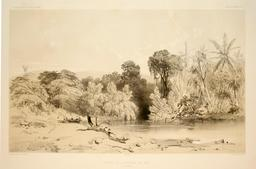 Entrée de la rivière de Païou à Vanikoro en 1838. Source : http://data.abuledu.org/URI/5980b75e-entree-de-la-riviere-de-paiou-a-vanikoro-en-1838