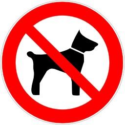Entrée interdite aux animaux de compagnie. Source : http://data.abuledu.org/URI/51bf5d82-entree-interdite-aux-animaux-de-compagnie